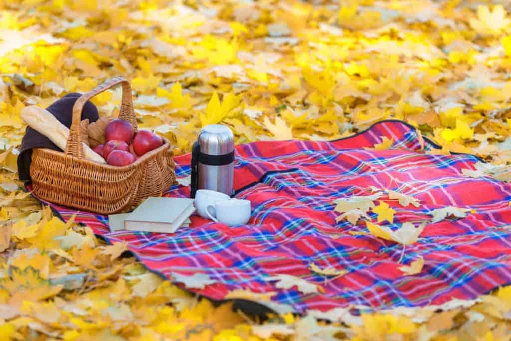 Fall leaves on the ground with a plaid picnic blanket and picnic basket with thermos and books to read