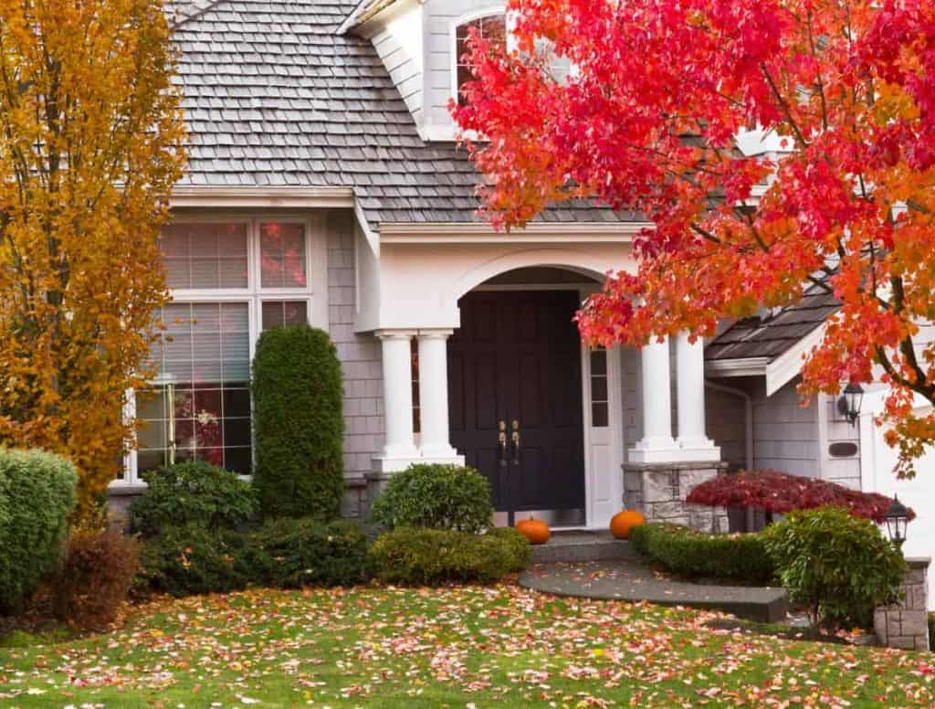 House with pumpkins on front door with lots of fall leaves on the ground an a tree that's changed color to orange leaves